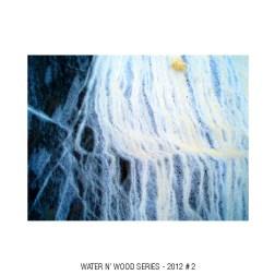 water n wood 02