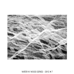 water n wood 07