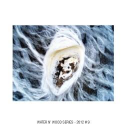 water n wood 09