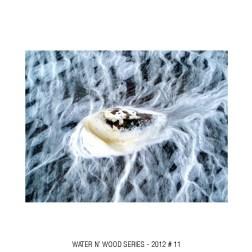 water n wood 11
