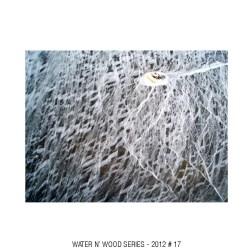 water n wood 17