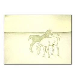 horses original